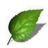 Искусственные листья и добавки
