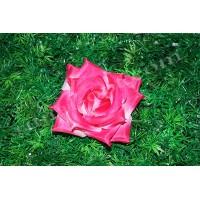 Роза чайная малая №76, Ø 12,5см