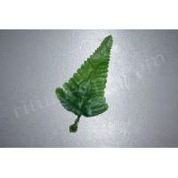 Лист елочка